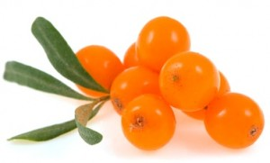 Sea Buckthorn Berry Trio